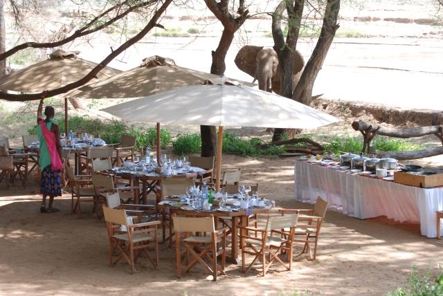 wedding kenya elephant camp lodge1